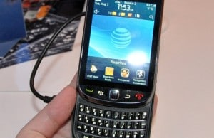 blackberry-torch