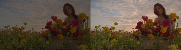 Flowerfield Standard left New Dolby Imaging Tech right 620x174 Dolby Vision Will Make 4K TV Even Better